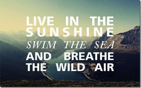 live-in-sunshine