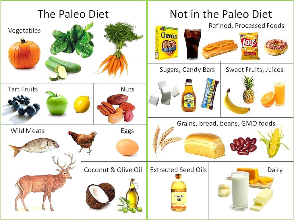 Paleo Diet 6