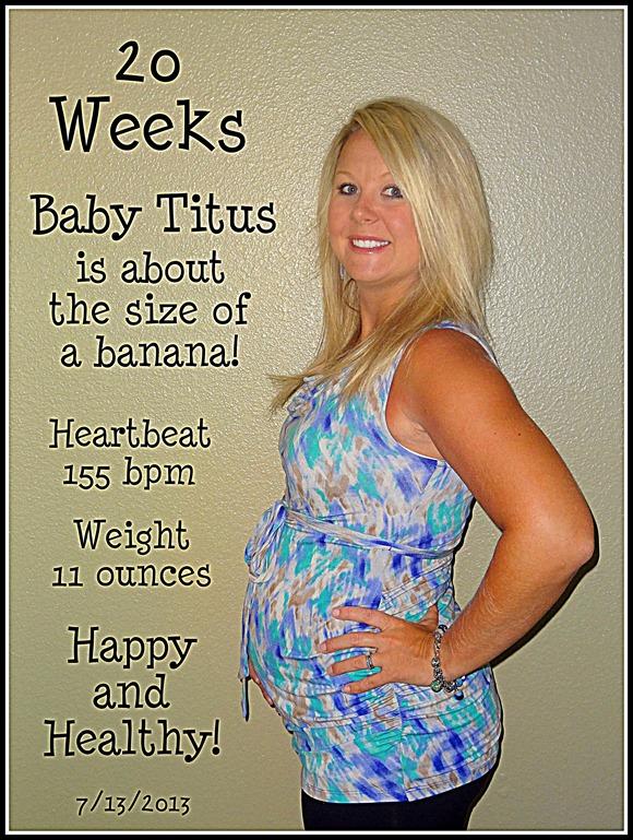 20 Weeks B